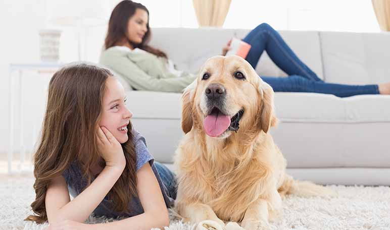 ventajas-de-tener-una-mascota-para-los-ninos-wikiduca