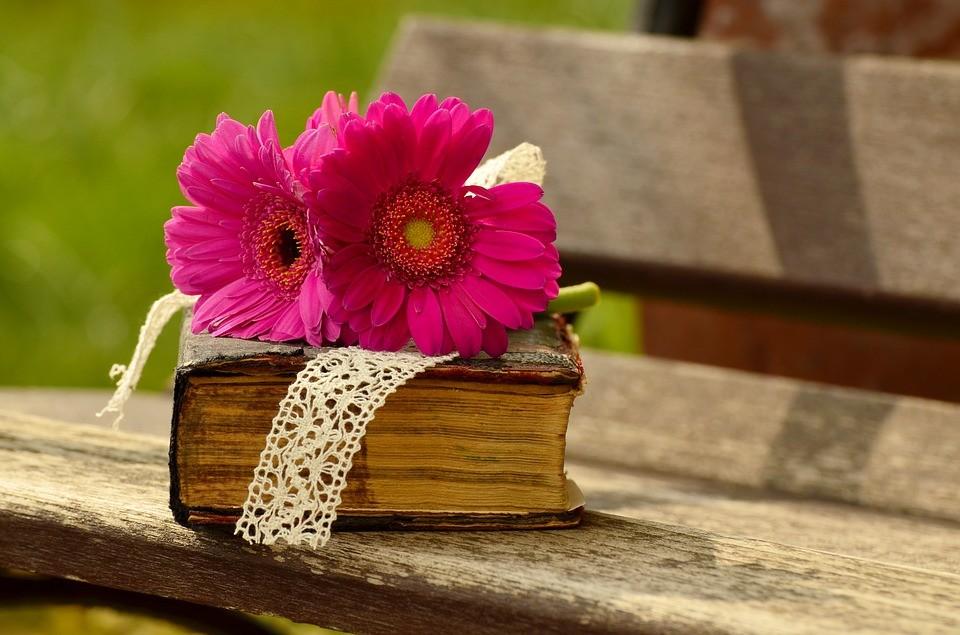 Día del Libro: celebradlo con un cuento infantil bilingüe