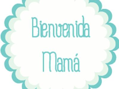 Bienvenida Mamá El Punto De Encuentro De Las Mamás Primerizas